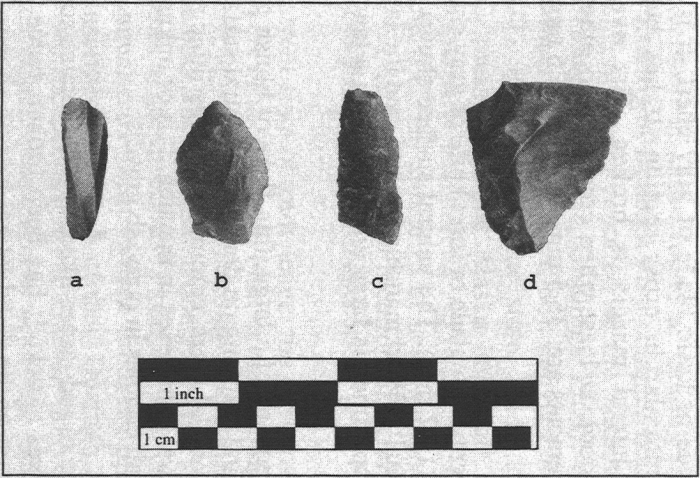 Artifacts from the Hicks Site (XHP-583): a) microblade core face fragment; b) heavily resharpened biface; c) sideblade fragment; d) retouched flake knife.