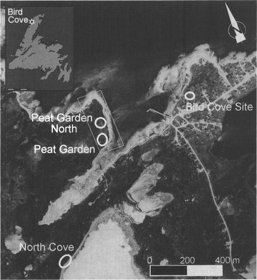 Location of study area and Bird Cove sites mentioned in the text. Rectangle corresponds to area of sea-level reconstruction in Figure 2