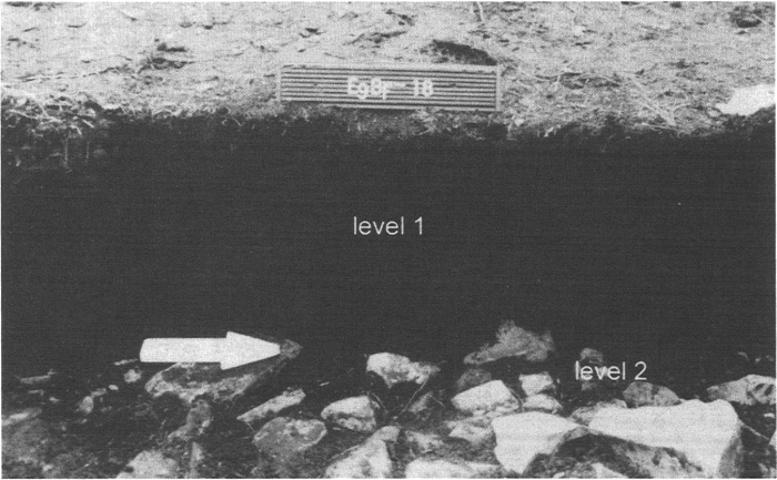 Stratigraphic profile of Peat Garden North. Level 1 is a sterile peat layer. On top of and in between the rocks of level 2, Dorset Palaeoeskimo cultural material is found. Unit shown is exactly 1 metre.