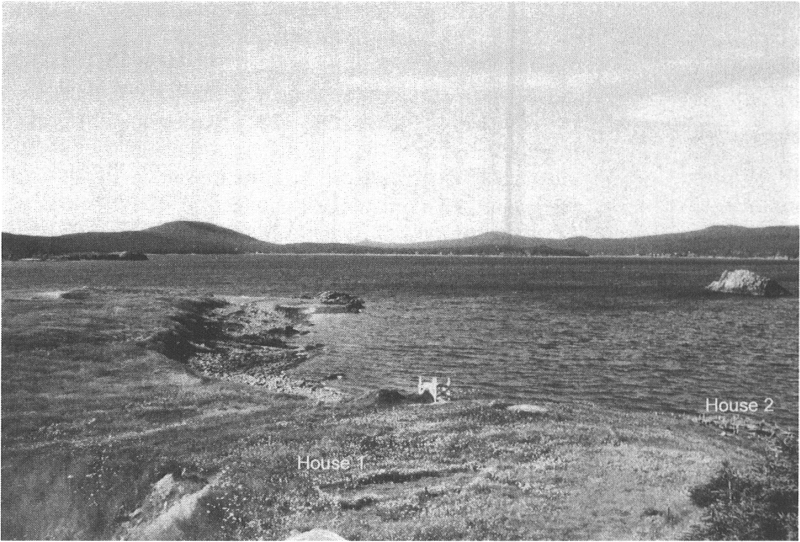 Southern part of Dildo Island. In the foreground, the rectangular outline in the grass shows the location of House 1. House 2 is located downhill, by the excavation stakes.