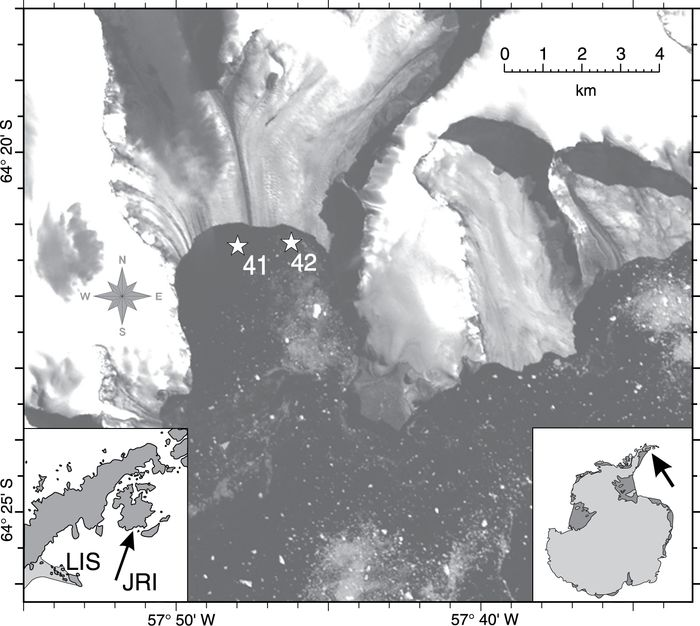 Landsat image from 1 February 2001 showing the terminus of Swift Glacier on James Ross Island (JRI) and the location of sampling stations discussed in text. Inset maps show the location with respect to the Antarctic Peninsula (at left) and the Antarctic continent (at right). The present northern edge of the Larsen Ice Shelf (LIS) is shaded.