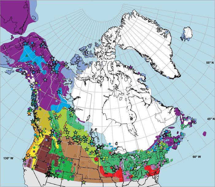 Late Quaternary Vegetation History Of Northern ... U2013 Géographie Physique Et  Quaternaire U2013 Érudit