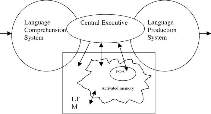 FOA: focus of attention LTM: long-term memory