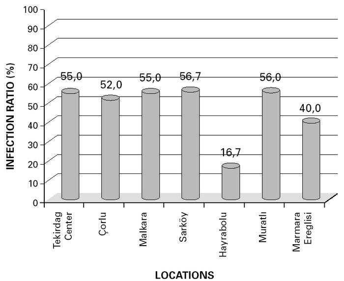 Infection ratio (%) of tested viruses in wheat samples from seven counties in Tekirdag, Turkey in 2003.