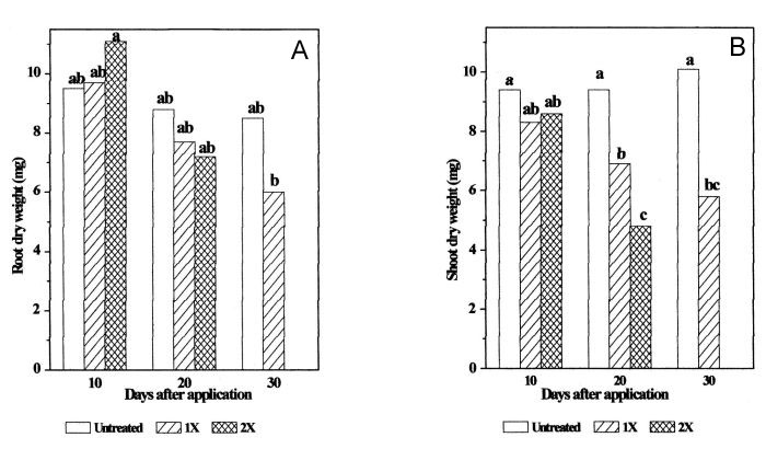 Bentazon/MCPA effect on red clover root (A) and shoot (B) dry weight.