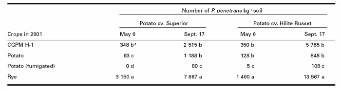 Pratylenchus penetrans populations under two potato cultivars in 2002 at L'Assomption