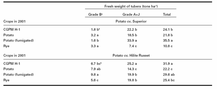 Potato yields in 2002 on two cultivars at L'Assomption