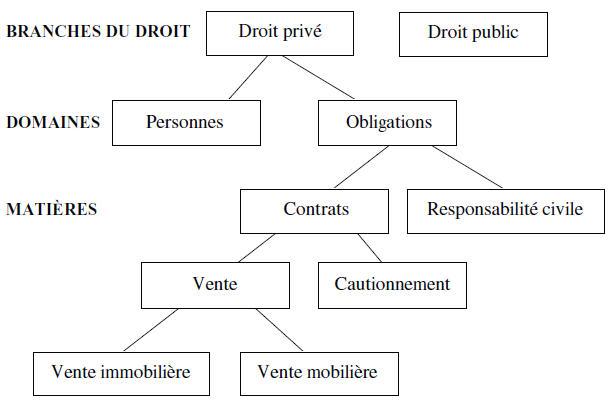Les Categories La Classification Et La Qualifica Les