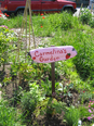 Gardeners lay claim to their plots by planting them and making signs.