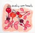 Rosehip Apartments: natural and constructed environment: Joanna Turner, Winnipeg, October 2016.
