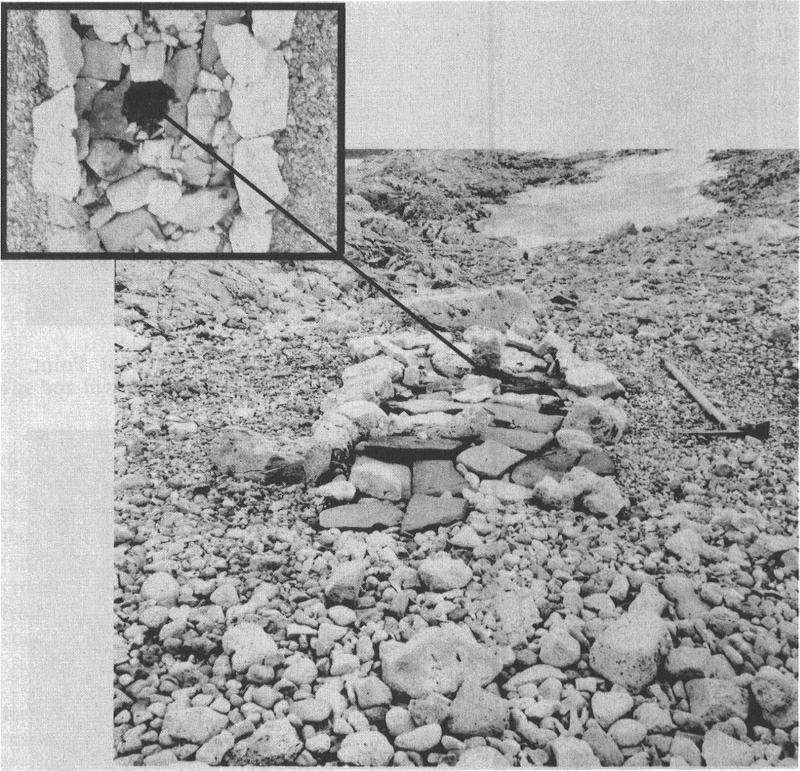 Late Dorset midpassage dwelling at the Snowdrift site, Dundas Island; insert: vertical view of hearth with pot rests, charcoal and charred fat (photo: R. McGhee)