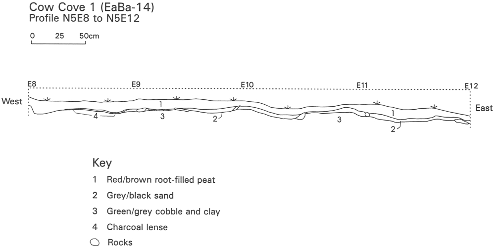 Cow Cove 1: Soil profile