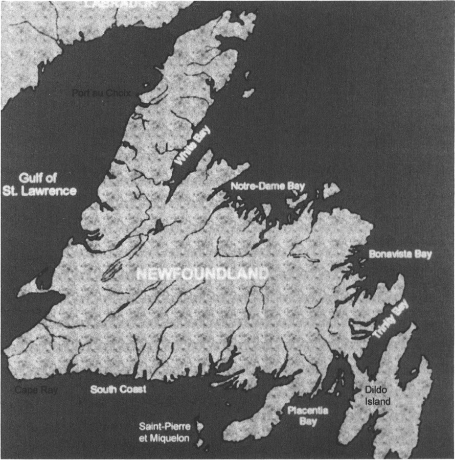Map of Newfoundland showing location of Dildo Island