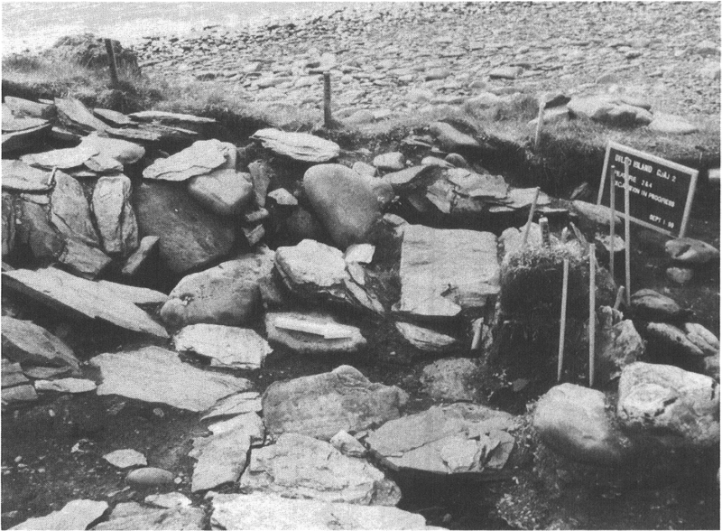 Cooking Area 1 after excavation. Note the slanted rocks and slabs at the rear of the structure.