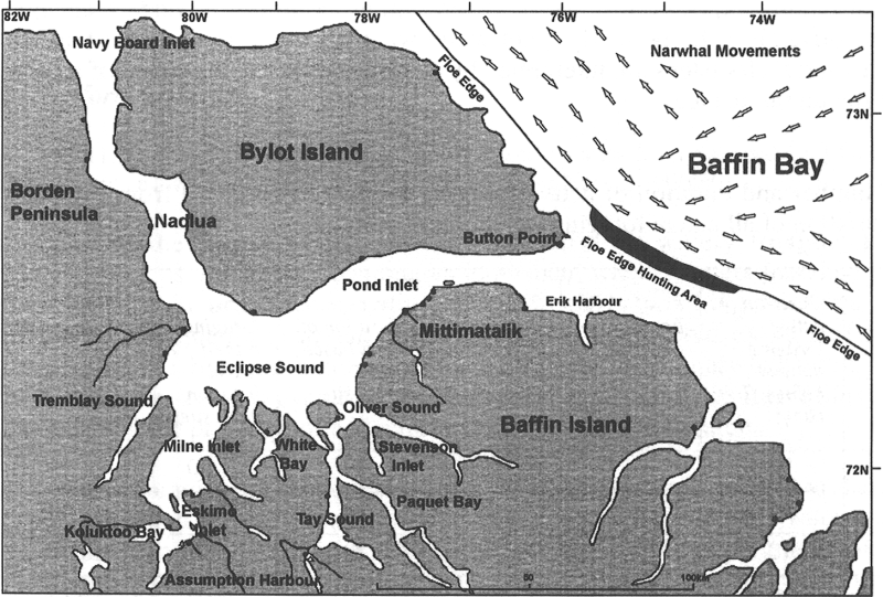 Spring floe edge Inuit use area and narwhal migration routes.