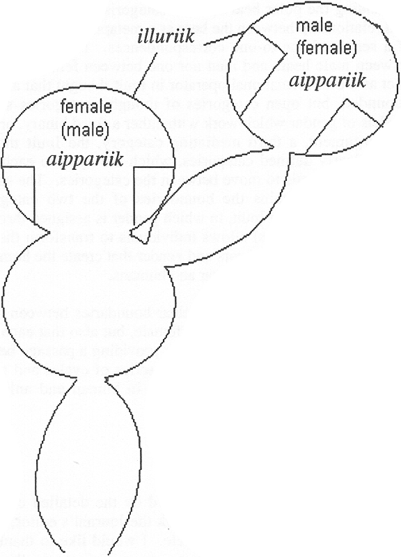An Inuit model of gender relations (The plan of the double snow house is taken from Boas [1964 (1888): 138, fig, 106]).