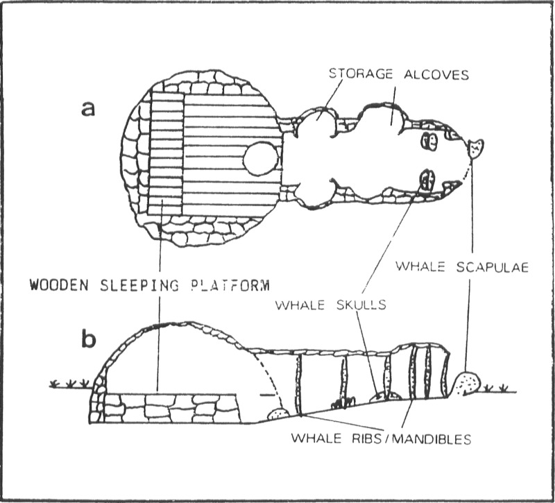 Cross-section of northwest Alaskan Eskimo whale bone and sod dwelling (from Savelle 1987: 57 after Spencer 1959: 49).