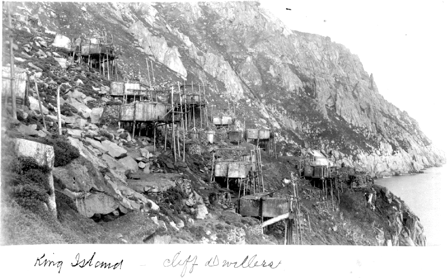 Historical photo of King Island in 1888. Note the number of poles in each house, their straightness, and their uniformity. Courtesy of Alaska State Library, Mrs. Allen (Agnes Swineford) Shattuck Photograph Collection, P27-110