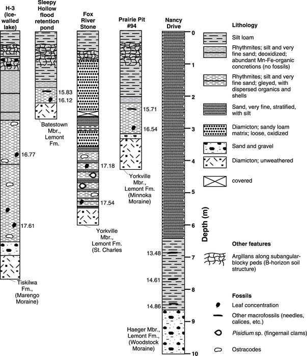 Lithologic logs of five key sites in northeastern Illinois indicating the relative abundance of ostracodes and plant macrofossils that provided the radiocarbon ages. The corresponding numbers with macrofossil symbols are the uncorrected radiocarbon ages in ka.