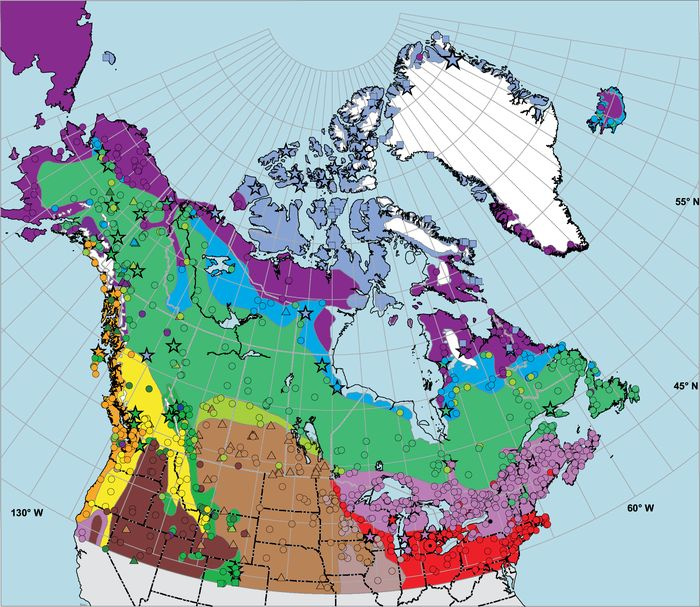 Late Quaternary Vegetation History Of Northern No Geographie Physique Et Quaternaire Erudit