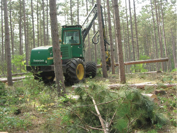 A tree harvester used in this trial for thinning red pines at the York site.