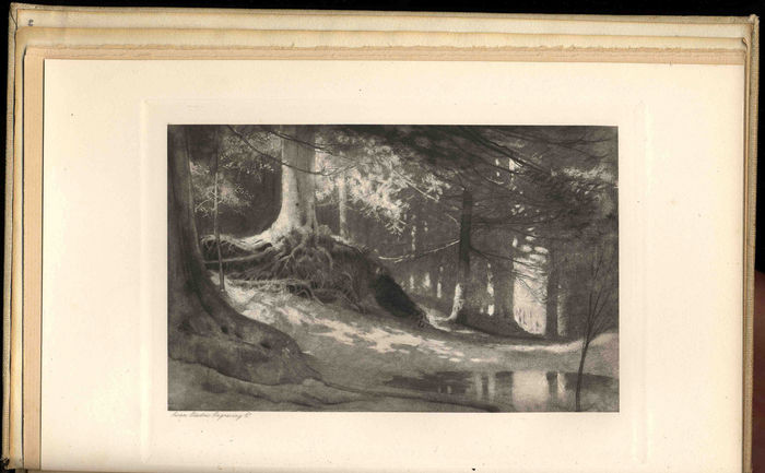"William Hyde, untitled illustration to Meredith's poem ""The Woods of Westermain,"" The Nature Poems of George Meredith [Constable, 1898]. Black and white photogravure."