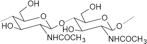 The chemical structure of chitin.