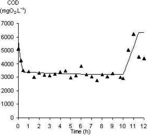 Correlation between model and experiment for COD during a pilot scale cycle.