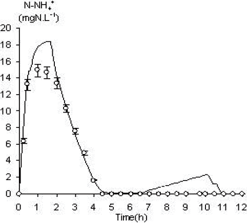 Correlation between model and experiment for N-NH4+ during a pilot scale cycle.