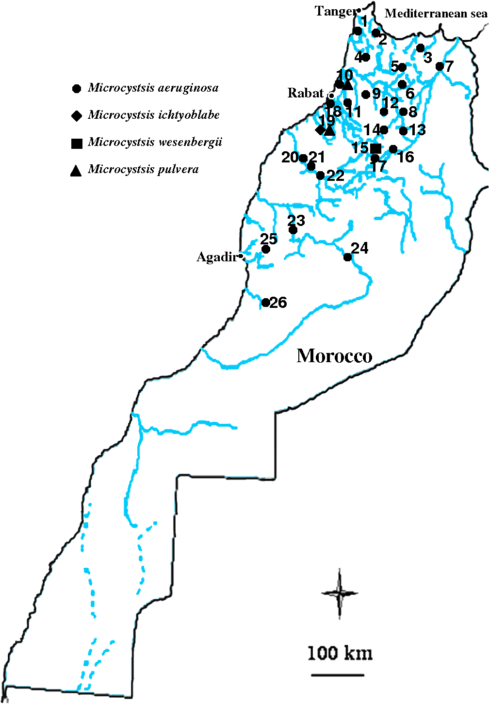Geographic localisation of some Moroccan reservoirs, natural lakes and ponds where Microcystis strains have been inventoried.