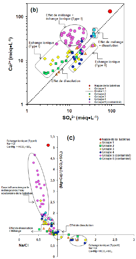Relations entre (a) Ca + HCO3 et les indices de saturation de la calcite; et (b) Ca + Mg + HCO3 et les indices de saturation de la dolomie.